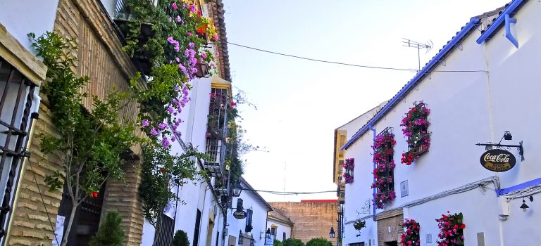 Bienvenido a Rutas Accesibles por Córdoba